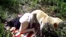 Dog sex дама с упругой жопой поеблась с четырехлапым в лесочку зоопорно фильм